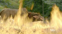 Быть человеком 4 Сезон (2013)