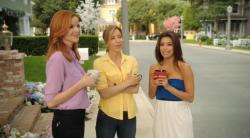 Отчаянные домохозяйки 7 Сезон (2010-2011)