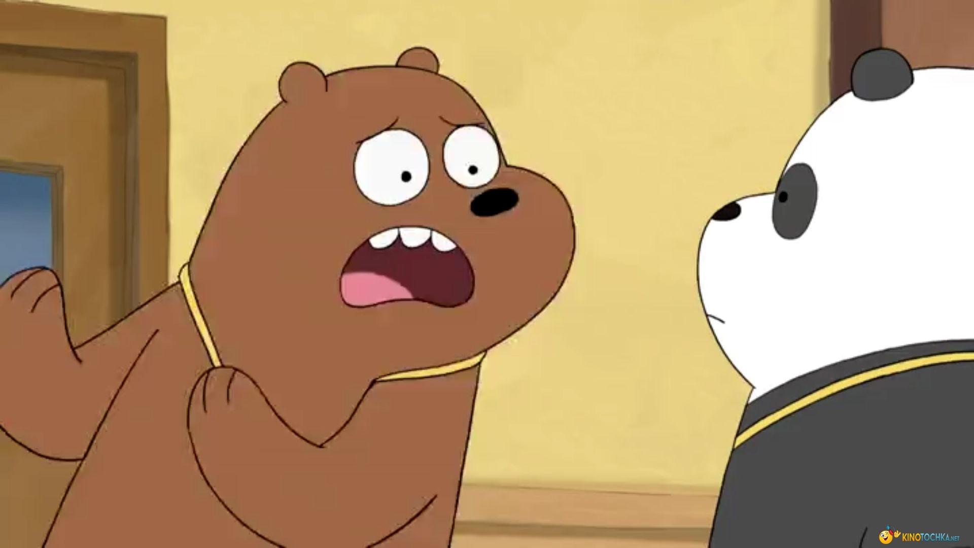 мы обычные медведи заставка