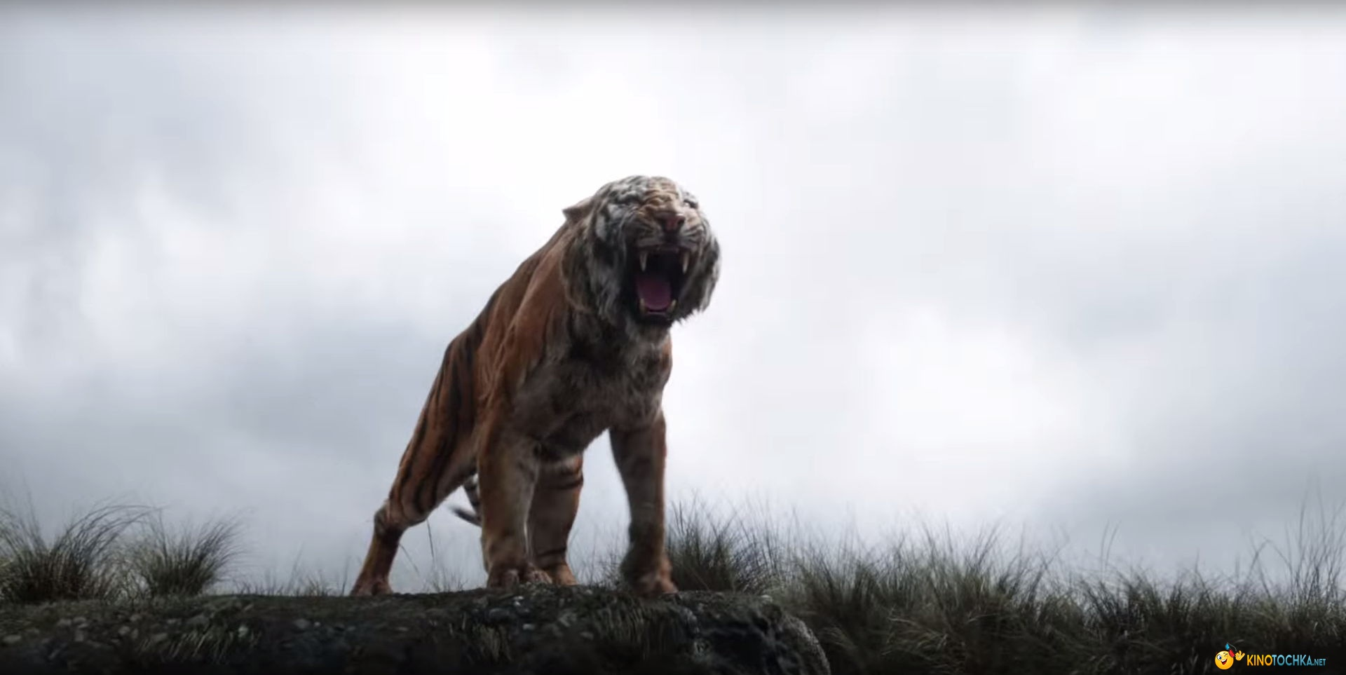 Книга джунглей 2016 смотреть онлайн фильм бесплатно в
