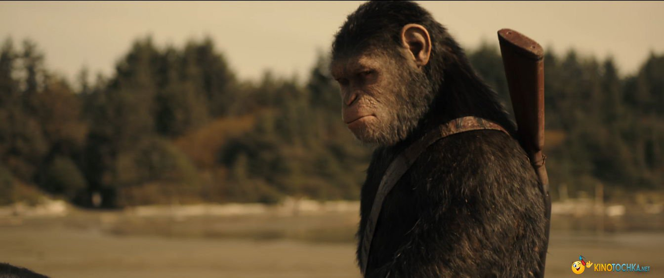 Планета обезьян: Война (фильм 2017) смотреть онлайн ...